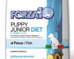 Animal Passion - SAÔNE - Forza10 Chiens